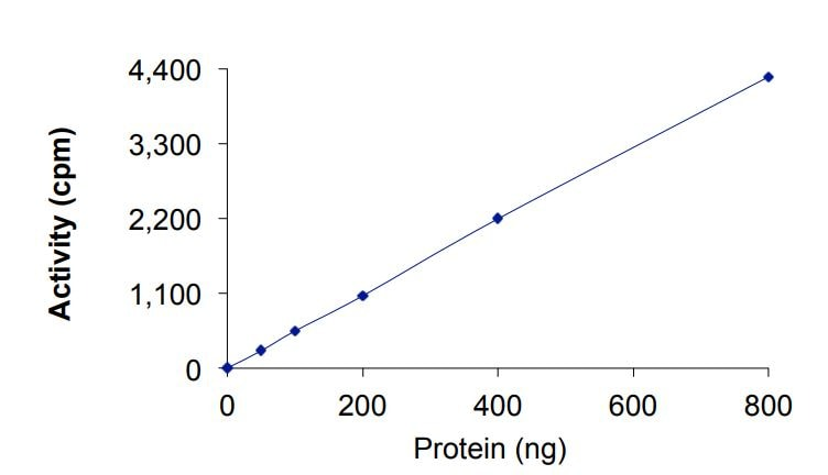 Functional Studies - Recombinant human ErbB 2 (mutated I767 M) protein (Active) (ab268627)