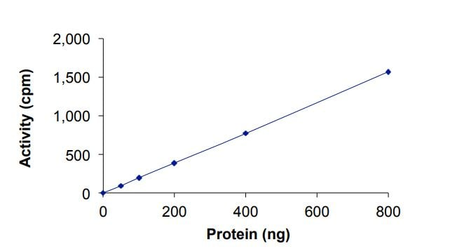 Functional Studies - Recombinant human ErbB 2 (mutated L755 W) protein (Active) (ab268629)