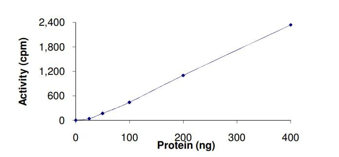 Functional Studies - Recombinant human KAT7 / Hbo1 / MYST2 protein (ab268698)