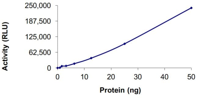 Functional Studies - Recombinant human and mouse ALK + KIF5B protein (Active) (ab268705)