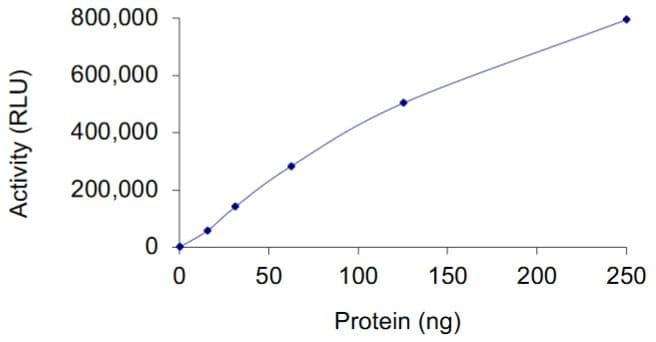 Functional Studies - Recombinant human KRAS protein (Active) (ab268714)