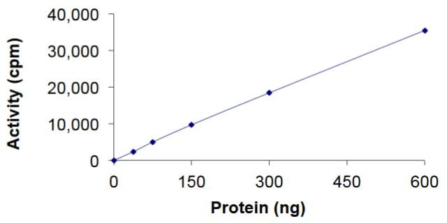 Functional Studies - Recombinant human KSR1 (mutated A637F) protein (Active) (ab268715)