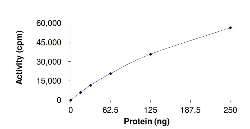 Functional Studies - Recombinant human LRRK2 (mutated R1441 H) protein (ab268737)
