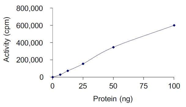 Functional Studies - Recombinant human Met (c-Met) protein (Tagged) (ab268779)