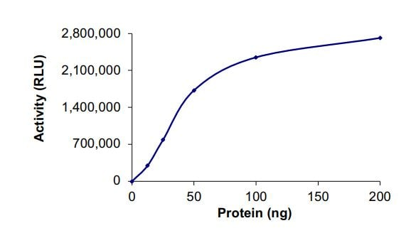 Functional Studies - Recombinant human PIP5K1C protein (ab268872)