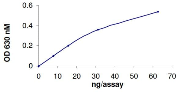 Functional Studies - Recombinant human PTPN12 protein (Tagged) (ab268901)
