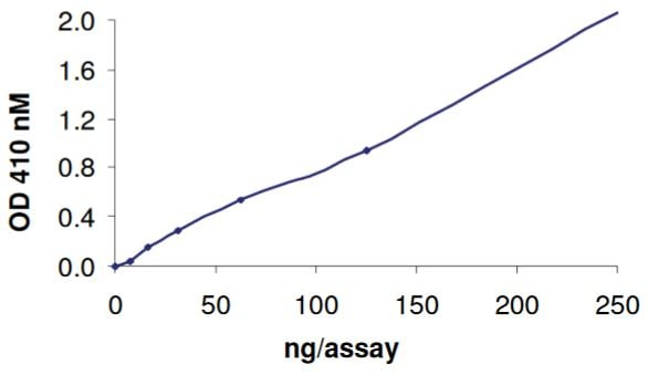 Functional Studies - Recombinant human TCPTP protein (Tagged) (ab268903)