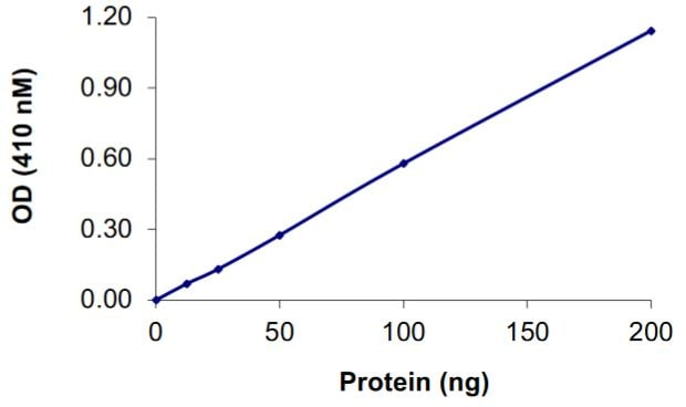 Functional Studies - Recombinant human VE-PTP protein (Tagged) (ab268905)