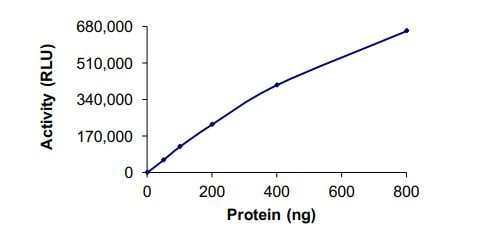 Functional Studies - Recombinant human SETD6 protein (ab268960)