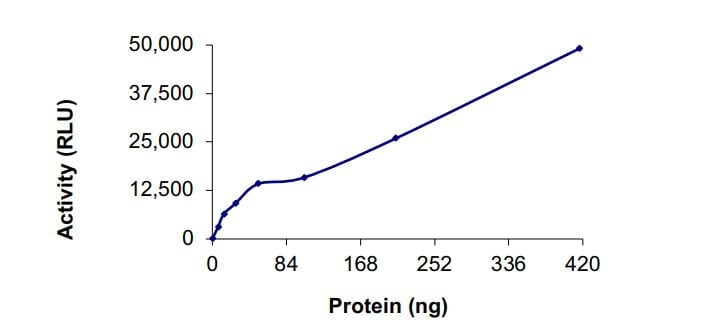 Functional Studies - Recombinant human KMT3C / SMYD2 protein (ab268975)
