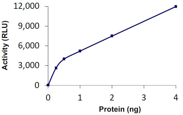 Functional Studies - Recombinant human UBPY/USP8 protein (Tagged) (ab269128)
