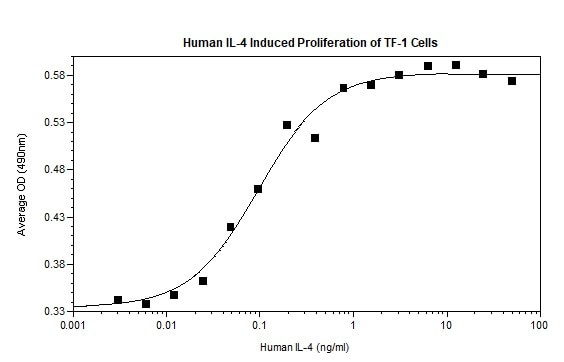 Functional Studies - Recombinant human IL-4 protein (Active) (ab269147)