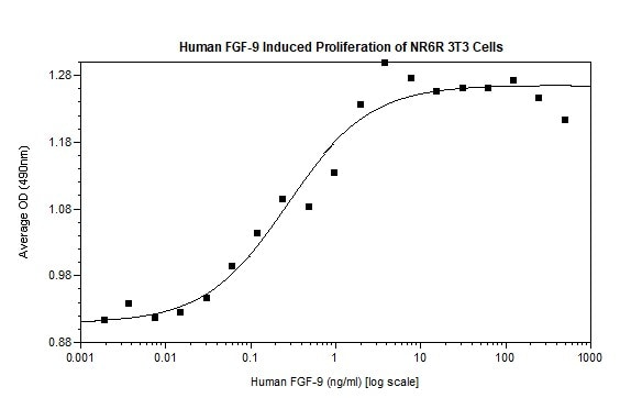 Functional Studies - Recombinant human FGF9 protein (Active) (ab269162)