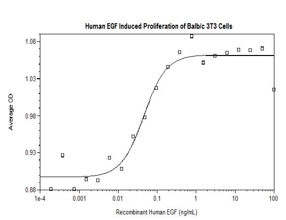 Functional Studies - Recombinant human EGF protein (Active) (ab269165)