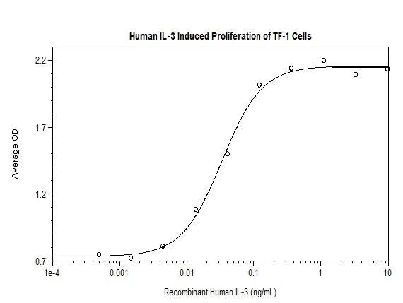 Functional Studies - Recombinant human IL-3 protein (Active) (ab269172)