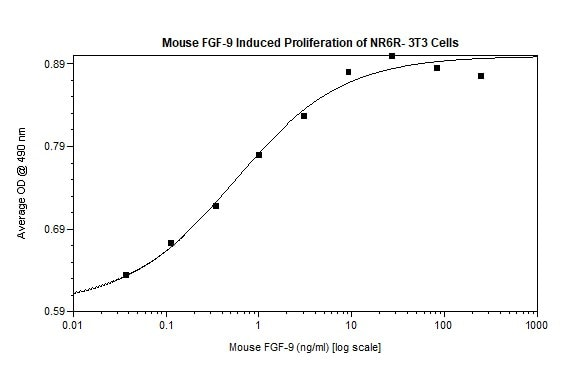 Functional Studies - Recombinant mouse FGF9 protein (Active) (ab269182)