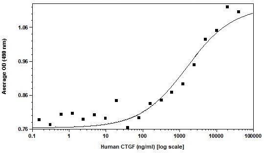 Functional Studies - Recombinant human CTGF protein (Active) (ab269222)