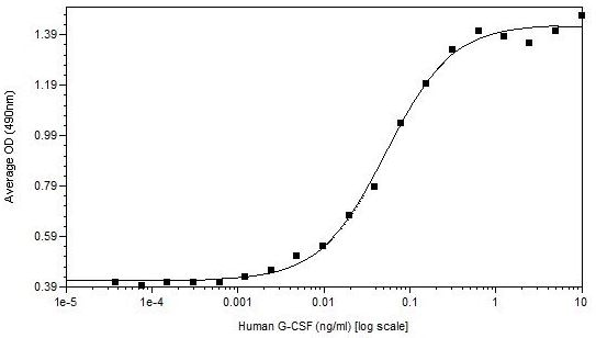 Functional Studies - Recombinant human G-CSF protein (Active) (ab269224)