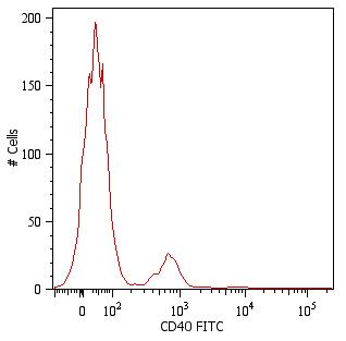 Flow Cytometry - FITC Anti-CD40 antibody [HI40a] (ab269301)