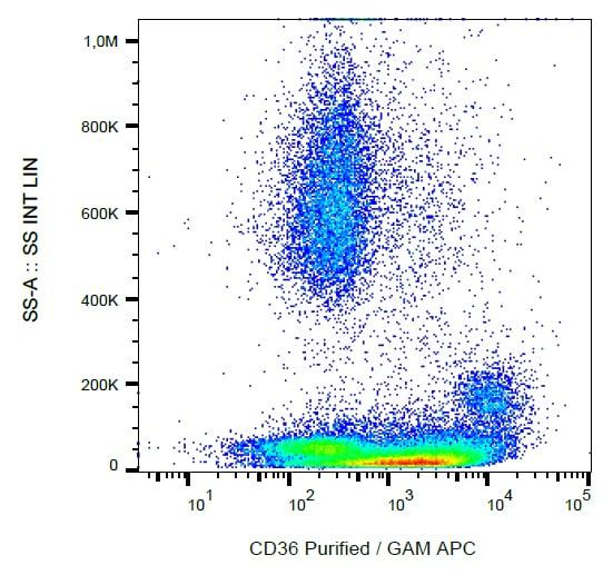 Flow Cytometry - Anti-CD36 antibody [CB38] (ab269351)