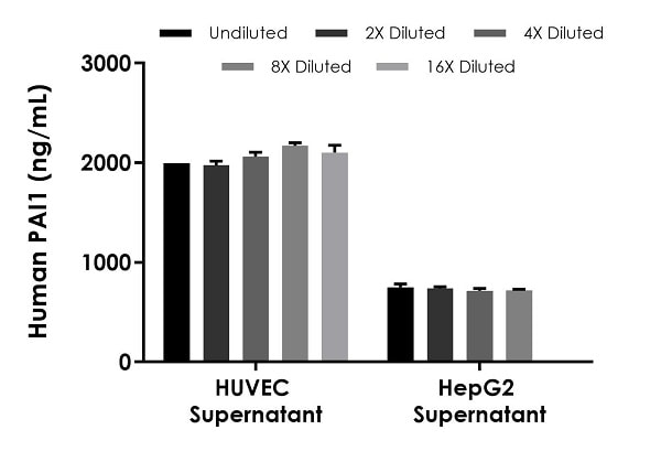 Interpolated concentrations of native PAI1 in HUVEC cell culture supernatant, and HepG2 cell culture supernatant samples.