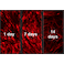 Fluorescent Cell Imaging - Cell Tracking RedDye - powered by polymersomes (ab269446)