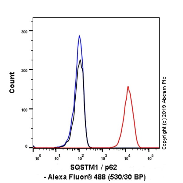 Flow Cytometry - Anti-SQSTM1 / p62 antibody [EPR23101-103] - BSA and Azide free (ab269458)
