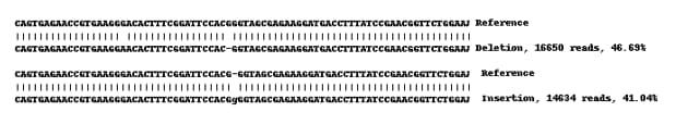 下一代测序-人TGOLN2(TGN46)敲除A549细胞系(ab269510)