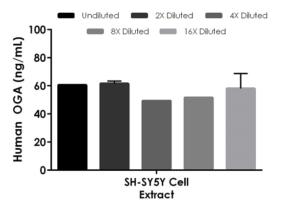 Interpolated concentrations of native OGA in human SH-SY5Y cell extract based on a 200 µg/mL extract load.