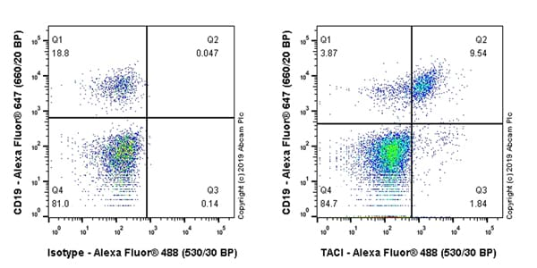Flow Cytometry - Anti-TACI antibody [EPR23045-153] - BSA and Azide free (ab269588)