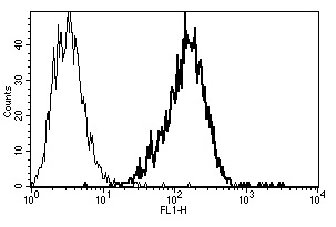 Flow Cytometry - Anti-CD75 antibody [B-L5] - BSA and Azide free (ab269707)