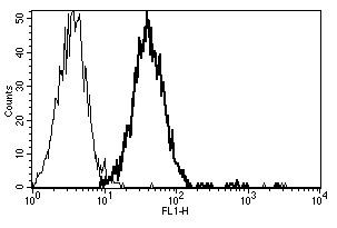 Flow Cytometry - Anti-CD151 antibody [B-E31] - BSA and Azide free (ab269712)