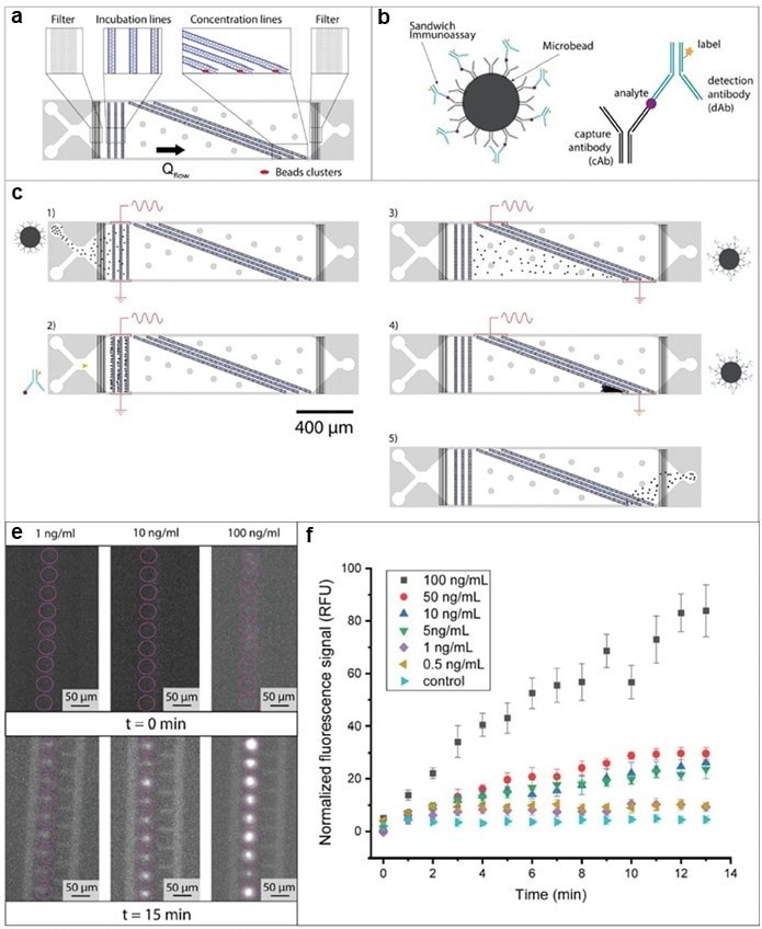 Immunoelectrophoresis - Alexa Fluor Conjugation Kit (Fast)- Lightning-Link (ab269823)
