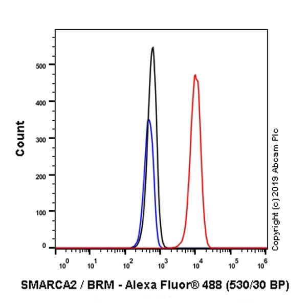 Flow Cytometry (Intracellular) - Anti-SMARCA2 / BRM antibody [EPR23103-44] - BSA and Azide free (ab269872)