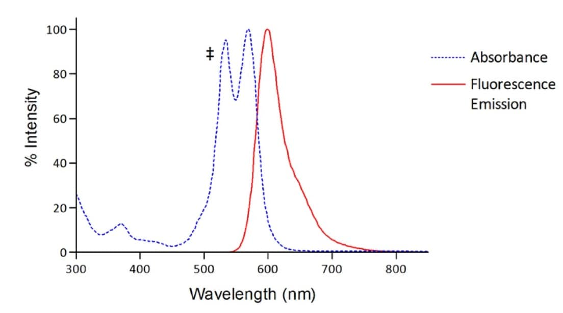 Atto 565 Conjugation Kit (Fast) - Lightning-Link® absorbance emission graph