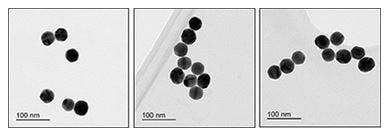 Electron Microscopy - 40nm Gold Nanoparticles (10 OD) (ab269930)