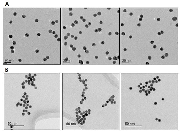 Electron Microscopy - 10nm Gold Nanoparticles (10 OD) (ab269934)