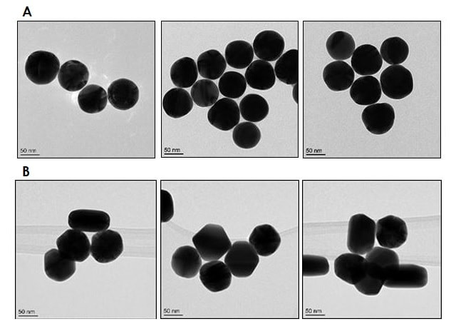 Electron Microscopy - 80nm Gold Nanoparticles (10 OD) (ab269940)