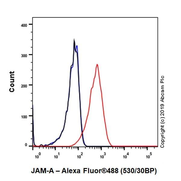 Flow Cytometry - Anti-Junctional Adhesion Molecule 1/JAM-A antibody [EPR23244-12] (ab269948)