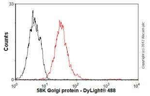 Flow Cytometry - Anti-58K Golgi protein antibody [58K-9] - Golgi Marker (ab27043)