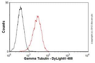 Flow Cytometry - Anti-gamma Tubulin antibody [TU-30] (ab27074)