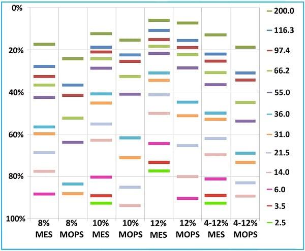 SDS-PAGE - Bis-Tris Precast Gels - RunBlue™ (8%, 12-well, 10x10cm) (ab270021)