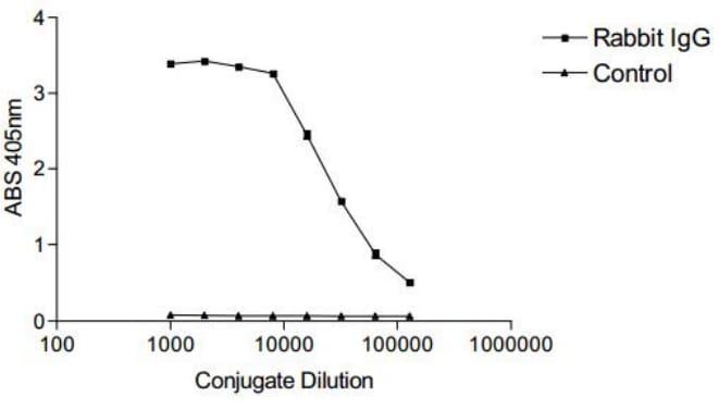 ELISA - Maleimide-Alkaline Phosphatase (ab270022)
