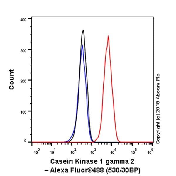 Flow Cytometry - Anti-Casein Kinase 1 gamma 2 antibody [EPR20918-13] - BSA and Azide free (ab270040)