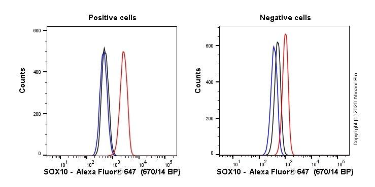 Flow Cytometry (Intracellular) - Alexa Fluor® 647 Anti-SOX10 antibody [SP267] (ab270151)