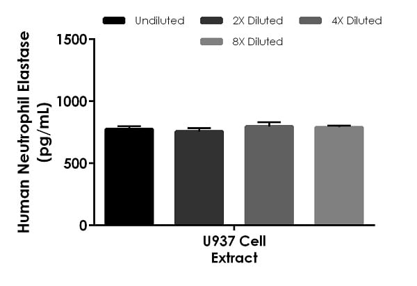 Interpolated concentrations of native Neutrophil Elastase in human U937 cell extract based on a 2.5 µg/mL extract load.
