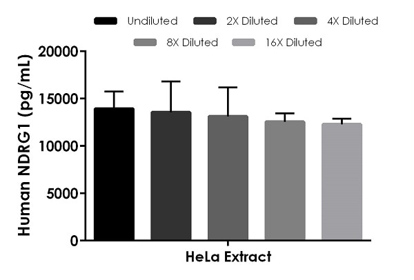 Interpolated concentrations of native NDRG1 in human HeLa cell extract based on a 1,000 µg/mL extract load.