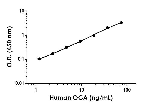 Sandwich ELISA - Human OGA Antibody Pair - BSA and Azide free (ab270383)