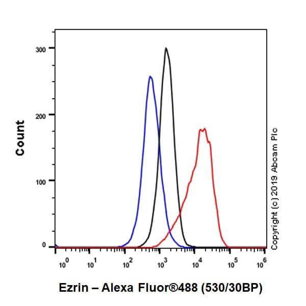 Flow Cytometry (Intracellular) - Anti-Ezrin antibody [EPR23353-55] (ab270442)