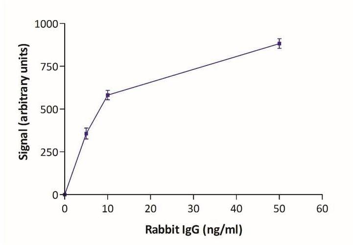 Lateral flow assay - Goat Anti-Rabbit IgG (20nm Gold, 10 OD) (ab270563)